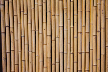 bamboo, wood, texture, wall, pattern, brown, fence, mat, nature, stick, natural, wooden, wallpaper, material, tree, yellow, textured, tropical, abstract, asia, striped, backgrounds, closeup, decor