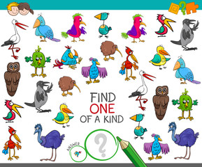 find one of a kind with birds characters