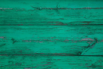 Vintage green painted old wood plank texture Wall mural