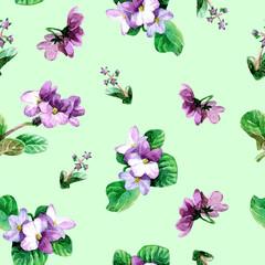 Seamless pattern of watercolor Saintpaulia flowers.
