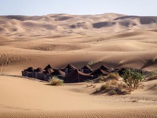 Berber camp Sahara Desert