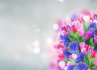 bouquet of blue hyacinth and tulips