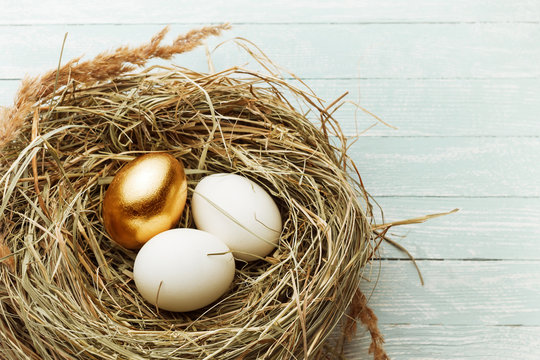 One gold and two ordinary eggs in the hay nest on light wooden bacground