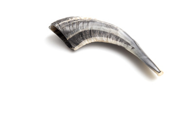 The Shofar is a Hollowed Ram's Horn Used to Call People to Rependance