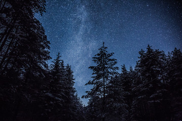 Paint the sky with the stars Wall mural