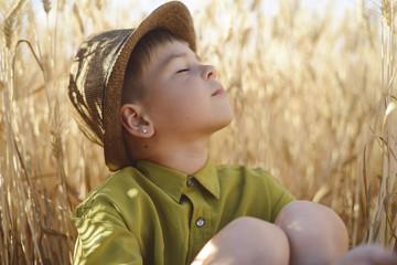 Boy wearing hat while sitting in wheat field