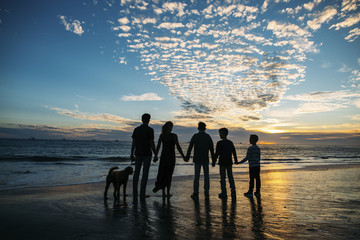 Rear view of family holding hands while standing on beach at sunset