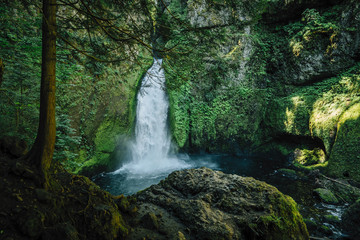 Majestic view of waterfall amidst forest