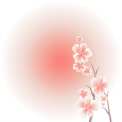Branches of Sakura with Pink flowers isolated on Pink gradient background. Apple-tree flowers. Cherry blossom. Vector