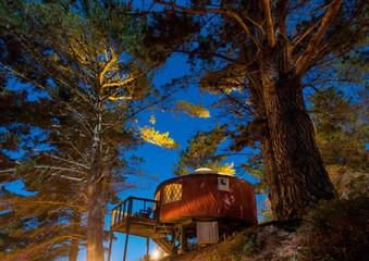 Yurt/tent under starlit sky in the woods, Big Sur, California