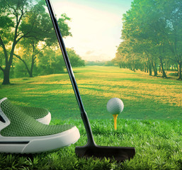 golf ball and putter begin to driving on green course