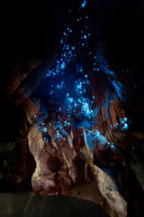 New Zealand Glow Worms in Waipu Cave