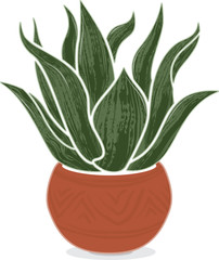 Stylized illustration of an agave plant in a Mexican terra-cotta pot with subtle decorations.  Isolated on white background.