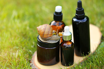 cosmetic with snail mucus.cosmetic set with extract of snail slime and a snails on a wooden cut on a green  plant background. snail mucus extract. Natural Cosmetics Concept