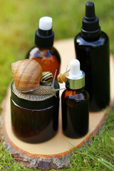 cosmetic with snail mucus.cosmetic set with extract of snail slime and a snails on a wooden cut on a green blurred  background. snail mucus extract. Natural Cosmetics Concept