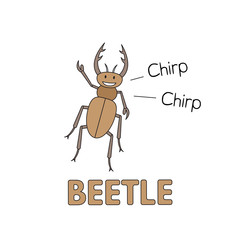 Cartoon Beetle Flashcard for Children