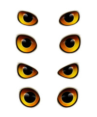 Owl Eyes Realistic Collection