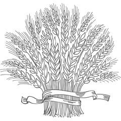 Hand drawn black ripe wheat sheaf.