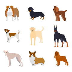 Cartoon Breed of Dogs Collection Icons. Vector