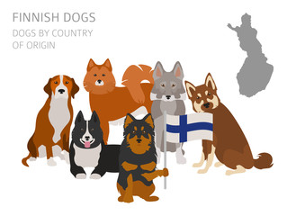 Dogs by country of origin. Finnish dog breeds. Infographic template