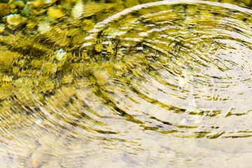 Circles on the smooth surface of the water on the river