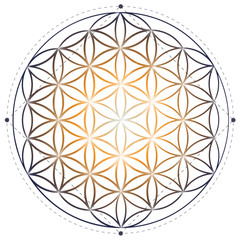Sacred geometry illustration: Flower of Life symbol.