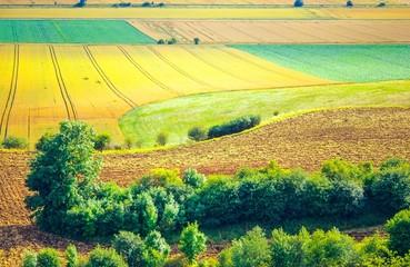 Landschaft, Blick vom Heseberg, nördliches  Harzvorland, Niedersachsen, Deutschland, Europa