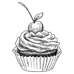 Hand-drawn illustrations of dessert