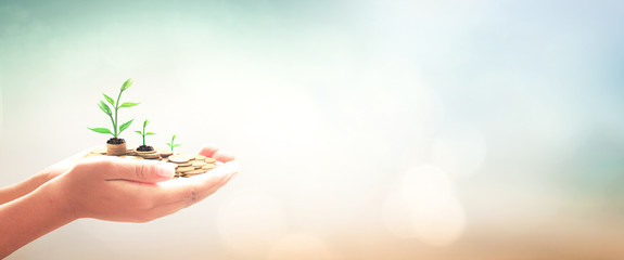 Invest and fund concept: Human hands save holding golden coin stack and small tree on blurred nature background.