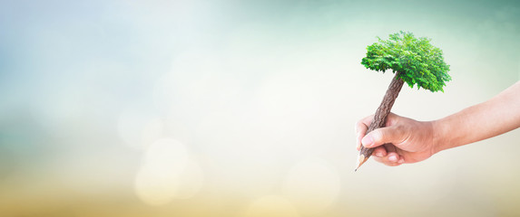 Teacher day concept: Student hand holding pencil of tree and writing on green meadow over blurred nature background