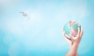 International human rights day concept: Two human hand hold earth globe and bird flying on blurred nature background. Elements of this image furnished by NASA