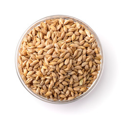 Top view of barley seeds in glass bowl
