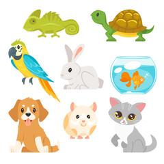 set of home animal pet