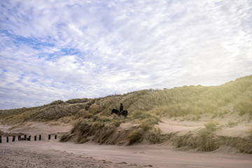 cavalier en promenade dans les dunes