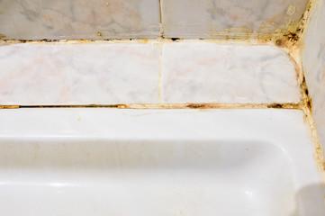 Mold in bathroom Wall mural