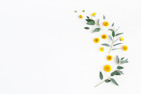 Flowers composition. Pattern made of yellow flowers and eucalyptus leaves on white background. Flat lay, top view, copy space
