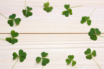 Closeup clovers leaves on white wooden background top view with copy space