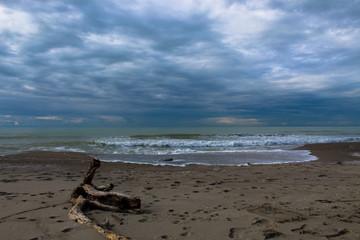 La spiaggia dopo la mareggiata