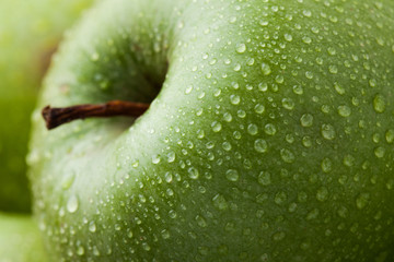 Close-up of ripe green apples covered with dew. Macro