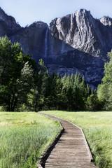 Yosemite Path