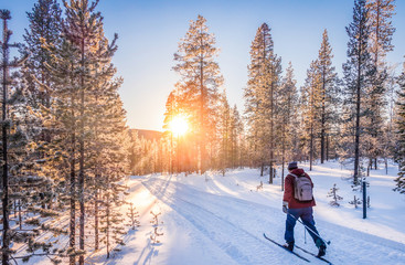 Poster Winter sports Cross-country skiing in Scandinavia at sunset