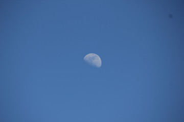 half moon in noon clear sky.