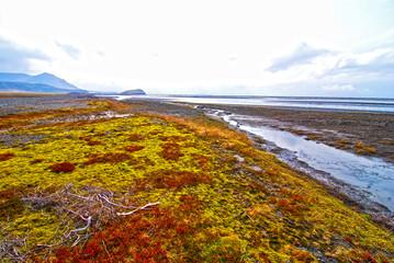 南アイスランドの風景