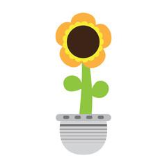 Cute sunflower on a pot