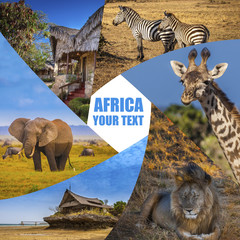 Travel to Africa. Animals of Africa. Poster from different animals. National parks of Kenya. Safari in the wild. Photo safari.