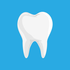 Single White and Healthy Tooth iSolated on Blue