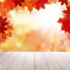 Autumn Leaves, Empty Grunge Wooden Board and Sullight on Fall Background