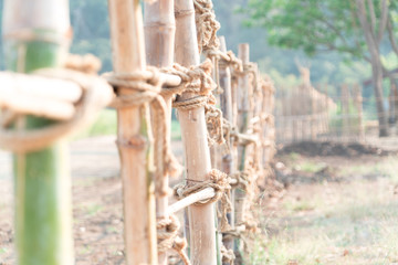 close up the bamboo fence on the field, green and brown bamboo fence vintage style