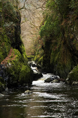 Fairy Glen gorge river and rapids, River Conwy, Betws-y-coed, Snowdonia Wales