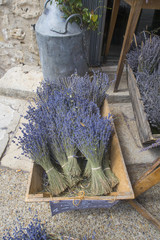 Dried brunches of lavender lying in a basket for sale on a street in France
